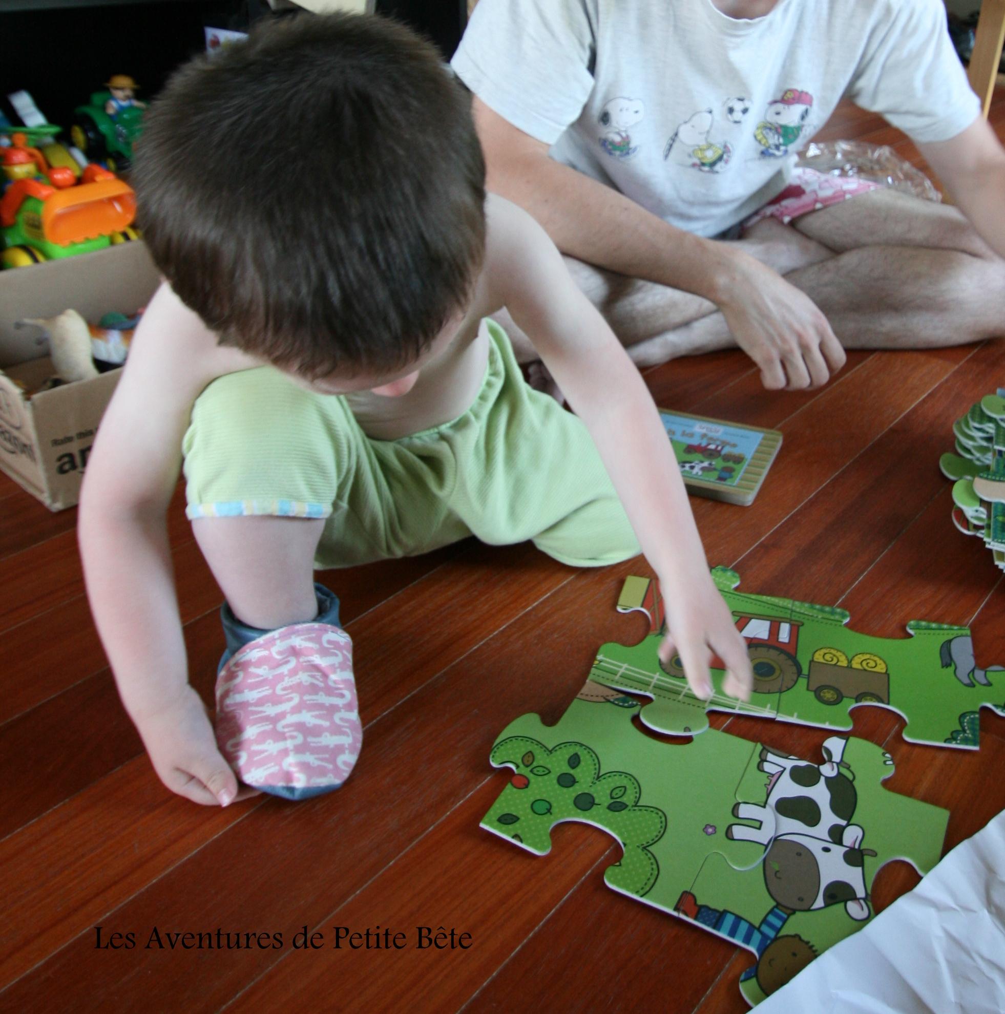 piecesPuzzle
